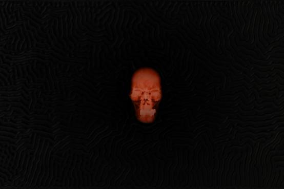Alexander de Cadenet:Labyrinth (The Portrait of Adolf Hitler)
