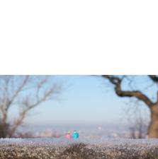 Slinkachu:January