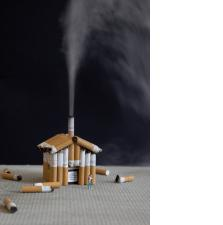 Slinkachu:Sustainable Living