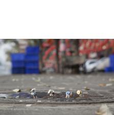 Slinkachu:The Food Chain