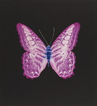 Damien Hirst:The Souls on Jacob's Ladder Take Their Flight (Large Purple/White Butterfly)