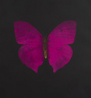 Damien Hirst:The Souls on Jacob's Ladder Take Their Flight (Large Purple Butterfly)