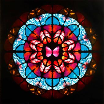 Damien Hirst:Sanctum (Copper, Blue and Pink)