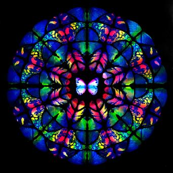 Damien Hirst:Sanctum (Psychedelia)