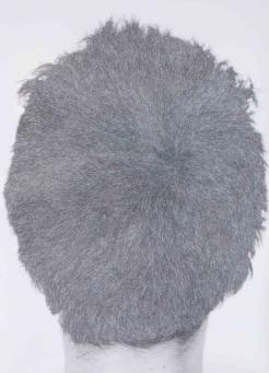 William Mackrell:Back of my Head
