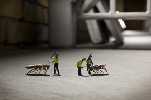 Slinkachu:Animals
