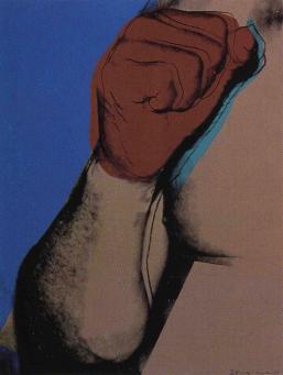 Andy Warhol:Muhammad Ali, F & S II.181